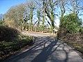 Lane junction in spring - geograph.org.uk - 1752453.jpg