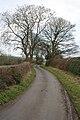 Lane to Stobb House Farm - geograph.org.uk - 2294494.jpg
