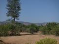 Lankamalleshawra sanctuary.png