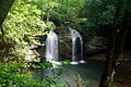 Largest-Waterfalls-Seneca ForestWander.JPG
