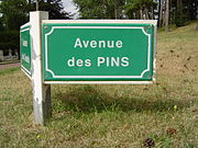 Le Touquet-Paris-Plage (Avenue des Pins).JPG