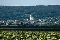Leithagebirge.jpg