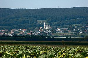 Royal free city - Kleinhöflein (Kishöflány) im Burgenland at the foot of the Leitha Mountains (Lajta-hegység)