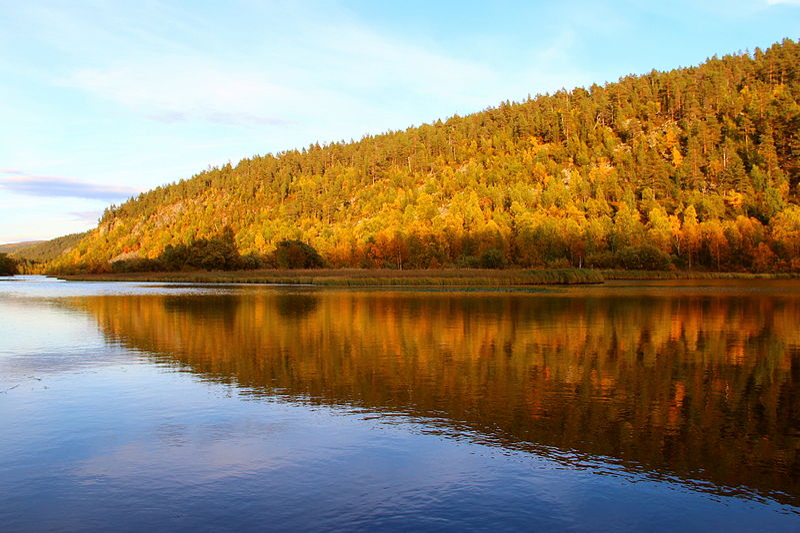 File:Lemmenjoki Autumn.JPG