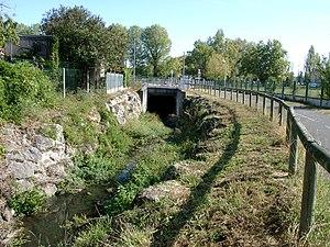 https://upload.wikimedia.org/wikipedia/commons/thumb/0/0d/Les_ontines_Merignac33.jpg/300px-Les_ontines_Merignac33.jpg