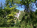 Lillafüred - Palota szálló a Kisvasútról nézve - panoramio.jpg
