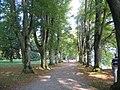 Lindenhof bei Lindau (Lindenhof near Lindau) - geo.hlipp.de - 5691.jpg