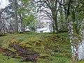 Little House amongst the Trees - geograph.org.uk - 414024.jpg