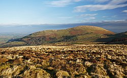 Little mell fell.jpg