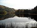 Loch Chon - geograph.org.uk - 1033686.jpg