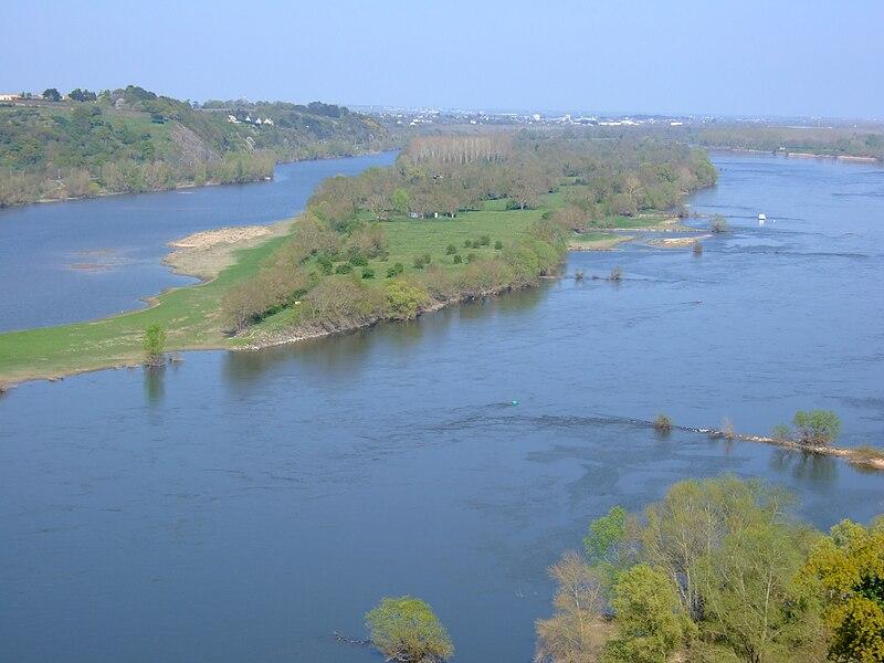 La Loire et l'Île Neuve-Macrière vus depuis la promenade de Champalud à Champtoceaux