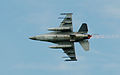 Luchtmachtdagen 2011 Royal Netherlands Air Force (6188272037).jpg