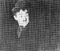 Ludwik Sempoliński (Ten wąsik).png