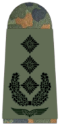 Luftwaffe-271-Oberst