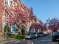 Münster, Schulstraße -- 2020 -- 6416.jpg