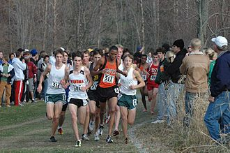 Cross country running - A men's cross country competition with a large leading pack in Minnesota, United States.