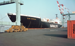 MS Elbe Express am Container Terminal - 1975.png