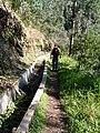 Madeira3 016.jpg