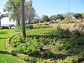 Madeira em Abril de 2011 IMG 1754 (5663770318).jpg