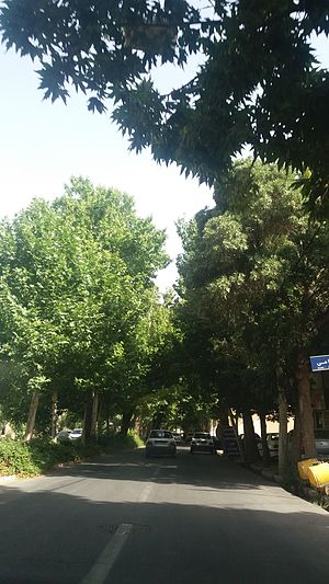 Mahallat - Street in Mahallat - 2016