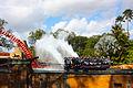 Making a splash (3210460897).jpg