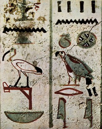1805 in birding and ornithology - Sacred ibis hieroglyph