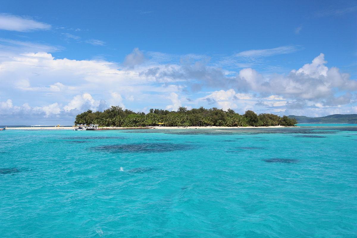 Kong Island D Torrent Fr