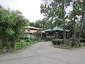 Mandeville Restaurant Trey Yuen 2.JPG