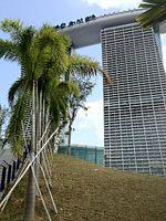 Marina Bay Sands - panoramio (4).jpg