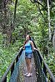 Maui rain forest.jpg