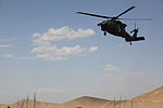 Medical evacuation 120701-A-NI188-005.jpg
