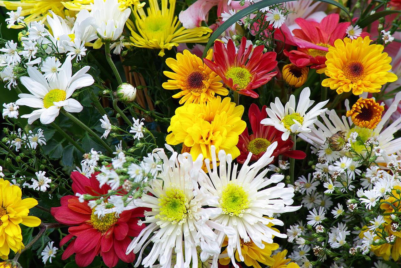 File memorial flowers g wikimedia commons