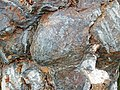 Metamorphosed pillow basalt (Ely Greenstone, Neoarchean, ~2.722 Ga; large loose block at Ely visitor center, Ely, Minnesota, USA) 10 (21453454385).jpg