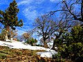 Mezarlıktan - panoramio (1).jpg
