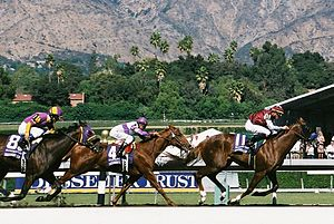 Breeders' Cup Juvenile - Midshipman in the 2008 Juvenile
