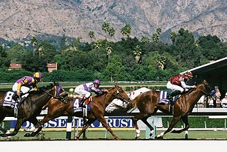 Midshipman (horse) - Midshipman wins the 2008 BC Juvenile