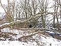 Mill Burn - geograph.org.uk - 1640192.jpg