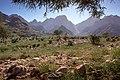 Mohamed Abdelzaher - Wiki Loves Africa (16).jpg