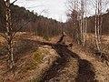 Moltemyr - panoramio.jpg
