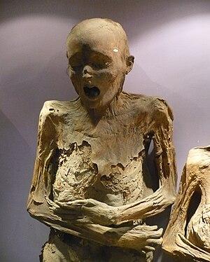 Mummies of Guanajuato - A mummy, 2009