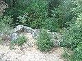 Mont Bouquet 30- D607 western road- dolmen reported A.jpg