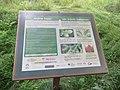Morgan Arboretum 02.jpg