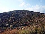 Mount Kinkan Spring 20100426.jpg