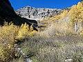 Mount Timpanogos Trail - panoramio (2).jpg