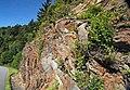 Muscovite schist (Precambrian; Blue Ridge, North Carolina, USA) 4.jpg