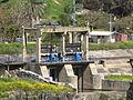 NAHARAYIM ISLAND ISRAEL 2012 (1).JPG