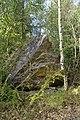 NSG Steinbruch Holzmühle (103).jpg
