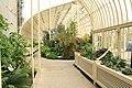 National Botanic Garden,Dublin,Ireland - panoramio (61).jpg