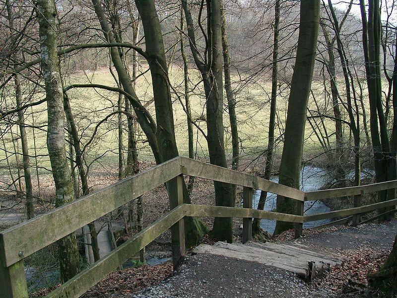В долине речки Дюссель. Фото: Википедия, автор Cordula