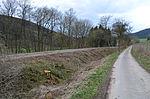 Nebenbahn Finnentrop-Wenholthausen (6920676900).jpg